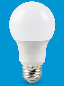 LED Screw-In Light Bulbs