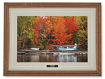 Flying Colors Print S-24460