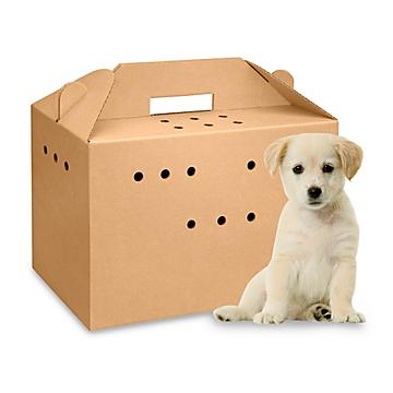 Corrugated Pet Carrier